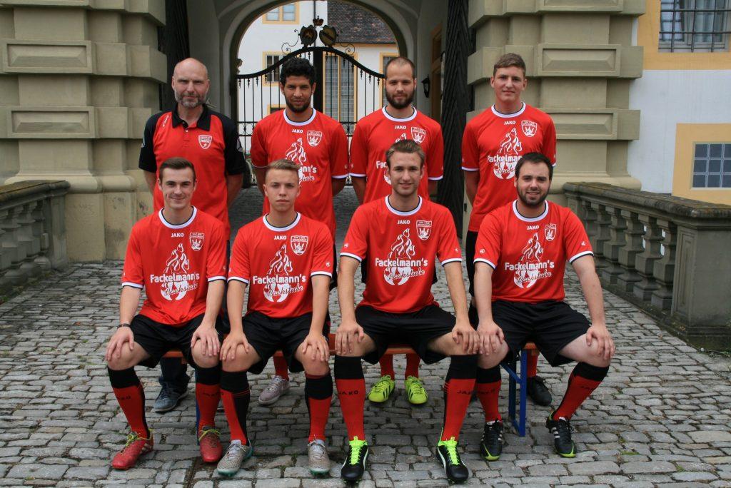 TSV-DJK-Wiesentheid-Neuzugaenge-Saison-2016-17